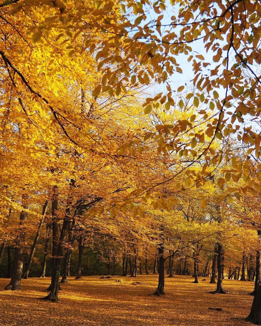 TOP 5 peisaje desprinse din poveste, care sunt defapt locuri din Cluj